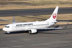 JA308J_Boeing737-800W_JapanAirlines_HND (Tony Osborne - Rotorfocus) Tags: boeing 737 737800 japan airlines jal tokyo international airport haneda 2019