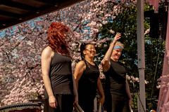 CherryBlossomDC2019-826.jpg (carlton.colter) Tags: sakurataikofest cherryblossomdc taiko taikotakeover washington dc usa