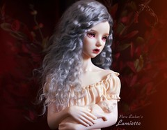 Companion ❤️ (pure_embers) Tags: pure embers bjd sd 13 doll dolls uk maskcat lisette girl lumiette pureembers emberslumiette photography photo ball joint resin portrait bust kitty cat grey hair red