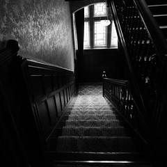 Knightshayes Court (3) (~g@ry~ (clevedon-clarks)) Tags: knightshayescourt blackwhite black white monochrome mono historic history nationaltrust uk devon estate gardens nikon d810 nikkor 1635mm