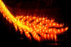Taking Flight (Seeing Visions) Tags: 2018 unitedstates us losangelescounty la arcadia laarboretum moonlightforest chineselanternfestival night dark colorful cloth light reflection distortion dragon tail orange yellow raymondfujioka