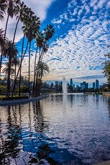 Another View of Echo Park Lake (SCSQ4) Tags: california donutstreetmeet echopark echoparklake losangeles morning altocumulus clouds sky city downtown downtownlosangeles water lake palmtrees cloudy