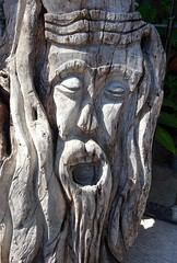 Driftwood (knightbefore_99) Tags: mexico mexican huatulco tropical awesome sun sol sunny oaxaca dreams playa art carving driftwood face funny nice street