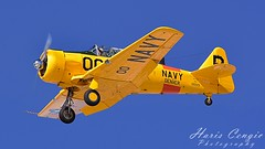 T-6 Texan (Hcengic) Tags: texan airplane aviation t6