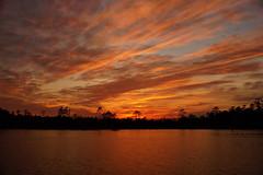 ...cloudscape (Jim Atkins Sr) Tags: sunset spectacularsunsetsandsunrises cloudsstormssunsetssunrises cloudscape northcarolina fairfieldharbour creek sony sonyphotographing sonya58