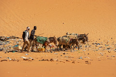 Off to work (s_andreja) Tags: mauritania chinguetti donkey desert sand people work ngc