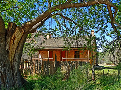 The Wood Home, Grafton Ghost Town, UT 2014 (inkknife_2000 (10 million + views)) Tags: graftonut ghosttown cattle zionnationalpark butchcassidyandthesundancekid americanwest westernfilms dgrahamphoto graftonghosttown abandonedhouse ranchhouse woodshome shadetrees