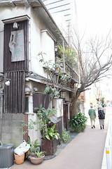 RICOH GR 38 (HAMACHI!) Tags: tokyo 2019 japan ricoh ricohgriii ricohimaging ricohgr gr gr3 griii loadtest cameratest shibuya