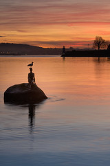 Good Morning, Girl In a Wetsuit (rhino!) Tags: vancouver stanleypark sunrise statue bird ocean water red orange yellow blue peaceful