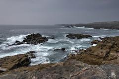 CoteSaumvage@Quiberon250518-0012_3_4 (NicoP.Photography) Tags: france bretagne morbillan presquîledequiberon côtesauvage océan sea nature paysage landscape hdr photomatix nikond7000 1024