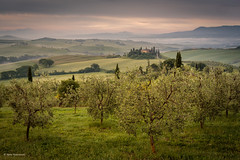 Morning mist in the valley (He Ro.) Tags: italien italy valdorcia tuscany mist sunrise mood belvedere poggiobelvedere splittoning landscape outdoors nature sonnenaufgang landschaft frühling spring fog toskana grün