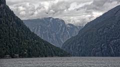 Misty Fjords National Monument (1) (GEMLAFOTO) Tags: alaska mistyfjordsnationalmonument ketchikan yosemiteofthenorth seaplane fjords mistyfjords