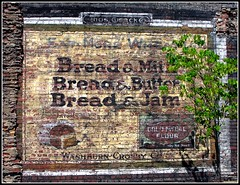 Bread and... (e r j k . a m e r j k a) Tags: ohio mahoning youngstown ghost sign bread flour erjk explore signs vintage goldmedal