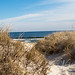 Dunes and Surf
