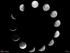 Moon Phases (January / February 2019) (Sergio D. Crivelin Junior) Tags: lua fases da moon phases canon canonxt thewowgallery astronomia astronomy