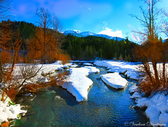 Cold and sunny winter day. Whistler, Canada (Veselina Dimitrova) Tags: outdoor canon nationalpark nationalgeographic naturephotography naturephoto naturelovers nature bestphotographers greatphotographers bestoftheday beautiful pictureoftheday picoftheday photooftheday clickcamera clickthecamera blue sky cold sunny river bushes trees snow winter canada mountain whistler