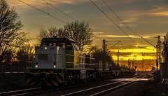 41_2019_02_14_Gelsenkirchen_Bismarck_0275_905_DE_404_CAPTRAIN_mit_Brammenzug ➡️ Herne_Abzw_Crange (ruhrpott.sprinter) Tags: ruhrpott sprinter deutschland germany allmangne nrw ruhrgebiet gelsenkirchen lokomotive locomotives eisenbahn railroad rail zug train reisezug passenger güter cargo freight fret bismarck db ccw de efm eh eloc hctor rpool pkpc spag 323 0077 0275 0632 1225 1265 1266 1275 3294 6145 6156 6185 6186 6189 6241 9123 9124 captrain ecr ell hectorrail lotos setg spitzke museumszug schrottzug logo natur outdoor graffiti wildgänse flugzeug sonnenuntergang airbus 380