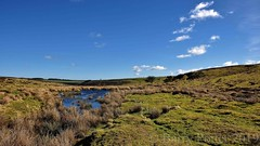 Dundale pond (North Yorkshire Moors above Levisham) (Barry Potter (EdenMedia)) Tags: barrypotter edenmedia nikon d7200