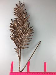 IMG_3966 (angelika.hiebl) Tags: herbst blätter bronze gold