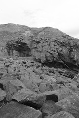 Cliffs,Collieston_Mar 19_529 (Alan Longmuir.) Tags: monochrome grampian aberdeenshire collieston cliffs