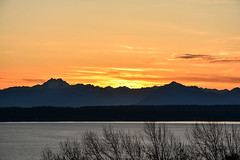 Magnolia Sunset Views 19 (C.M. Keiner) Tags: seattle washington usa city cityscape skyline mountains pacific northwest puget sound sunset magnolia hills clouds spring cherry blossoms