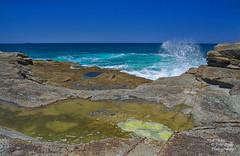 Norah Head (Peedie68) Tags: australia nsw centralcoast rocks waves ocean water seaspray algae norahhead