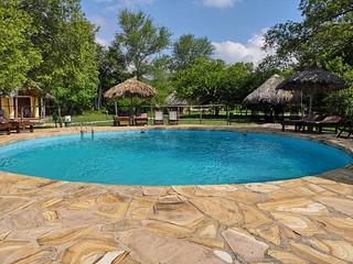 Africa Safari Selous pool