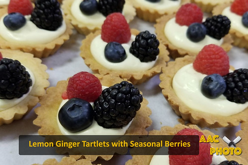 "Lemon Ginger Tartlets • <a style=""font-size:0.8em;"" href=""http://www.flickr.com/photos/159796538@N03/40034462373/"" target=""_blank"">View on Flickr</a>"
