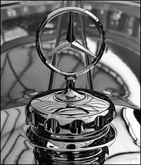 The star (Logris) Tags: mercedes benz klassiker classic car auto oldtimer stern star bw sw detail minimal remise chrom chrome