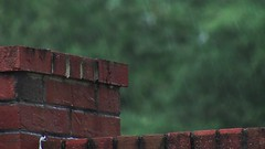 Rain on brick wall close up 1 (Ricardo's Photography (Thanks to all the fans!!!)) Tags: video b roll anthem park florida nature sony saintcloudfl centralflorida cinematic videolibrary freevideos 1080pvideos 1080p freefootage footage sonyvideos