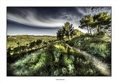 Chercher la source... (michel di Méglio) Tags: marseille nikon d7100 landscape green vert campagne provence