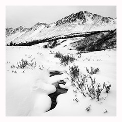Winter Landscape (www.halkaphoto.com) Tags: usa alaska anchorage winter landscape mountains chugach statepark snow monochrome bw blackandwhite