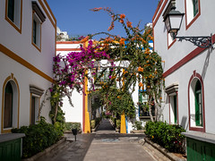 Port Mogan, Gran Canaria (Johnners61) Tags: portmogan grancanaria canaryislands spain espania town street flowers sun sunny bougainvillea holiday vacation picturesque streetlamp micro microfourthirds four thirds pen ep5 olympus puertomogan