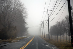 Foggy Day (milfodd) Tags: february 2019 fog foggy road vp utilitypole soundavenue