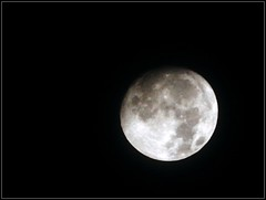 Moon Shot - Taken On September 22, 2018 by STEVEN CHATEAUNEUF (snc145) Tags: photo sky moon moonshot nature september222018 stevenchateauneuf flickrunitedaward