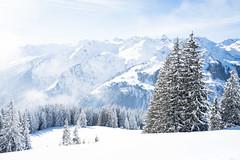 nice and calm (gato-gato-gato) Tags: apsc alpen berge europa fuji fujifilmx100f glarus glarussüd matt schnee schneehschuhwandern schweiz snowshoeing switzerland weissenberge winter x100f autofocus flickr gatogatogato pointandshoot snowshoehiking wwwgatogatogatoch suisse svizzera sviss zwitserland isviçre zuerich zurich zurigo zueri fujifilm fujix x100 x100p digital landschaft landscape landscapephotography outdoorphotography mountains mountain gebirge fels stein stone rock