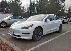 Tesla Model 3 (AJM CCUSA) (AJM STUDIOS) Tags: 2018teslamodel3 2018teslamodel3standard teslamodel3 tesla model 3 teslamodel3pic teslamodel3pics teslamodel3picture electriccar electric teslamodel3photo teslamodel3photos teslamodel3pictures teslamodel3image teslamodel3images ajmcarcandidusa ajmcarcandidcollection carcandid carcandidcollection carcandidusa ajmccusa automobile car vehicle carphotos automobilesphotos automobilephotography ajmstudios northamericancars carsofnorthamerica carsoftheunitedstates 2019
