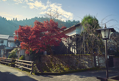 Traditional Japanese streets in autumn (KaeriRin) Tags: autumn red leaves street peaceful sunny cross process colourful colorful brightcolors sony7m2 sony alpha 28mm 28mm20 mountain tree sun rays blue green