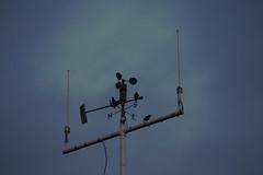 Avian Meteorological Society - IMG_2153 (406highlander) Tags: aberdeenharbour water marine northsea aberdeen scotland meteorology weather instruments anemometer bird birds sigma120400mmf4556apodgos canoneos6d windvane roundhouse