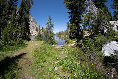 Fisheye view of a small pond with wildflowers in the Sawtooth Lake Trail in the Sawtooth National Forest of Idaho on a sunny day (m01229) Tags: sunny color pine peaceful nature reflection day beauty trees summer tree peak serenebackground outdoors america ironcreektrail fisheye sawtoothnationalforest tranquil sky landscape sunrise sawtoothmountains scenic sawtooth sawtooths idaho outdoor landscapes salmonchallisnationalforest mountains alpinelake us daytime blue adventure northamerica reflections travel forest water american logs green usa clouds wilderness mountain