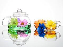 Flower Tea (Karen_Chappell) Tags: flowers flower floral tea glass teapot teacup white blue pink green yellow orange multicoloured stilllife reflection reflections colourful colours colour color