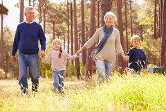 Grandparents and grandchildren walking in the countryside (Rookhus) Tags: outdoors fourpeople 60s caucasian adults seniors man men woman women kids youngchildren boy girl siblings sister brother toddler granddaughter grandfather grandmother grandson grandparents grandchildren family activeseniors activelifestyle health retirement forest nature togetherness bonding vacation holiday leisureactivity adventure walking woods frontview holdinghands inarow enjoying happy smiling fulllength countryside meadow copyspace horizontal unitedkingdomofgreatbritainandnorthernireland