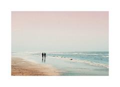 Walk on the beach (gerritdevinck) Tags: beach beautifullight belgium belgie beautifulcolors beachlife belgiumcoast sea seaview northsea coast coastline waves seawaves pastelcolors pastel softcolors koksijde koksijdeoostduinkerke weskust westvlaanderen gerritdevinckfotografie gerritdevinck fujifilm fujifilmseries fujifilmxseries fujifilmbelgium fujifilmphotography fujifilmxpro2 xseries xpro2 xf35mmf2 xf35mm fujinon35mmf2 35mm photography