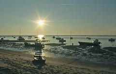 Jeune soleil. (jpidouence) Tags: ombres reflets bateaux bassindarcachon soleil ciel lever sunrise barque seashore shore
