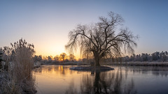 Ice like a mirror (Jannik Peters) Tags: ice mirror sunrise beautiful morning colors sony alpha 24mm 7 iii gm g master