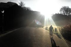Good Morning London: Beam Me Up (Coquine!) Tags: christianleyk london unitedkingdom greatbritain england morning commute walking morgen batterseapark wandsworth halo lensflare cyclist radler bicycle fahrrad shadow schatten silhouette