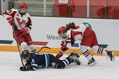 Mark Holloway 2019 02 26 womens hockey YT vs NWT-23 (memories by Mark) Tags: cwg2019 cwg canadawintergames reddeer hockey icehockey icerink womenshockey nwt yt yukon arena athletes puck action