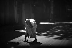 Main Sufi Hoon Sarmastah (N A Y E E M) Tags: oldman beggar candid light today afternoon street panchlaish chittagong bangladesh windshield eyecontact