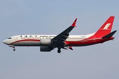 B-1260 Shanghai Airlines Boeing 737-8 MAX at Suvarnabhumi Airport Bangkok on 11 January 2019 (Zone 49 Photography) Tags: aircraft airliner airplane aeroplane january 2019 vtbs bkk bangkok thailand suvarnabhumi airport fm csh shanghai airlines boeing 737 738 800 8 max max8 b1260