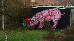The pig & the butterfly by Dzia (Red Cathedral [FB theRealRedCathedral ]) Tags: dzia graffiti porc pig varken zwijn streetart urban art wallart mural mechelen malines